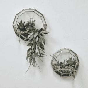 Plant Pots & Garden Accessories