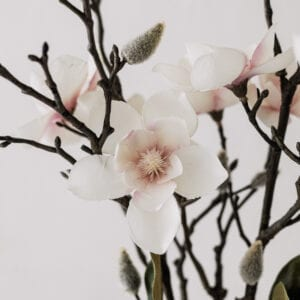 Silver Mushroom Sanctuary White Blush Magnolia Spray