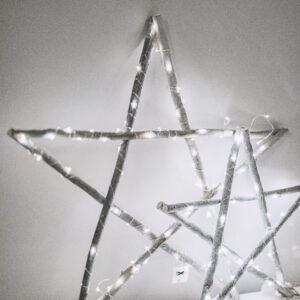 Silver Mushroom Label Small Wooden Light Up Star